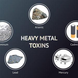 heavy_metals